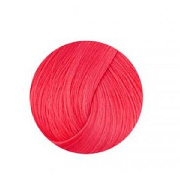 Anthocyanin 230 R03 — Red Grapefruit