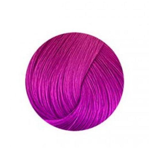 Anthocyanin 230 V03 – Purple