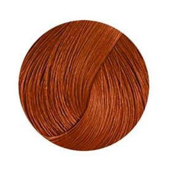 Anthocyanin 230 W03 — Chocolate Brown