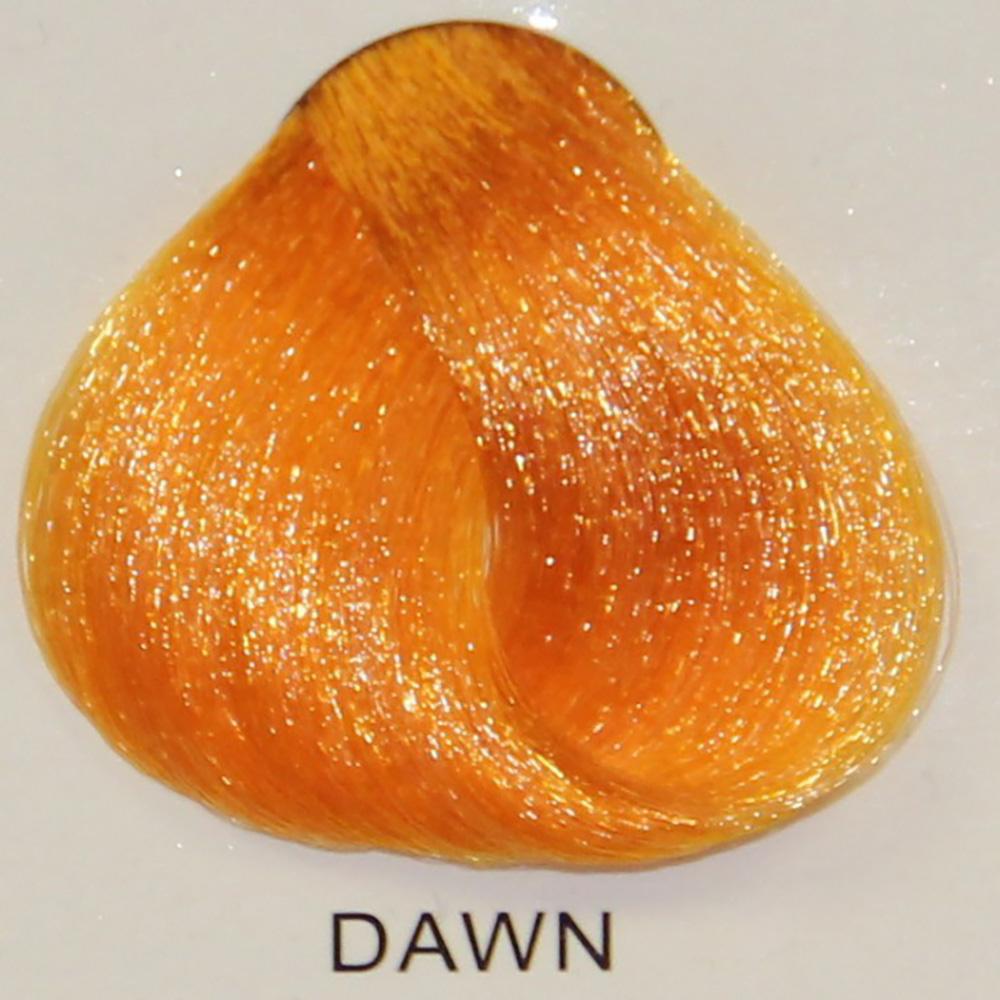 Stargazer Dawn