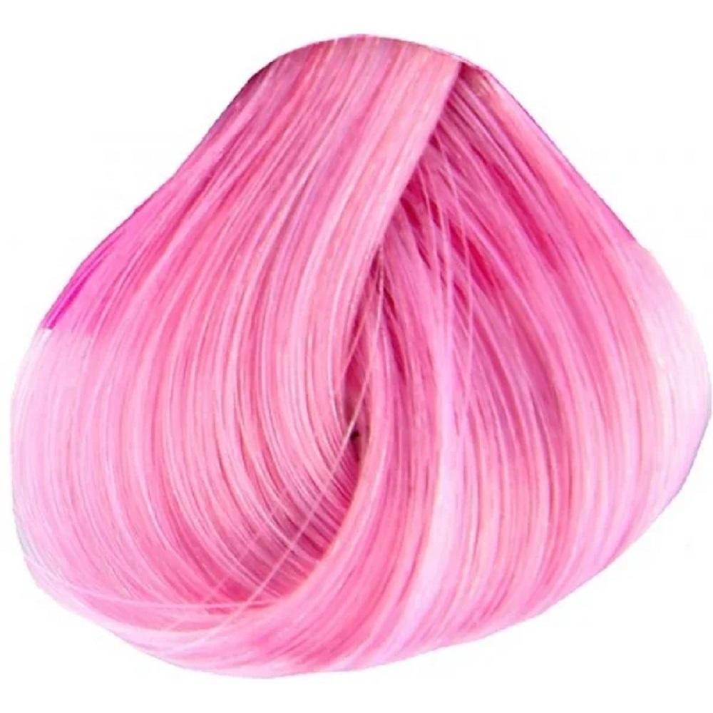 Stargazer Rose Pink