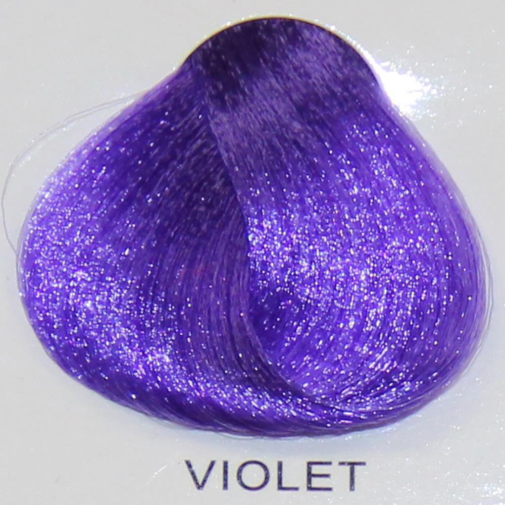 Stargazer Violet